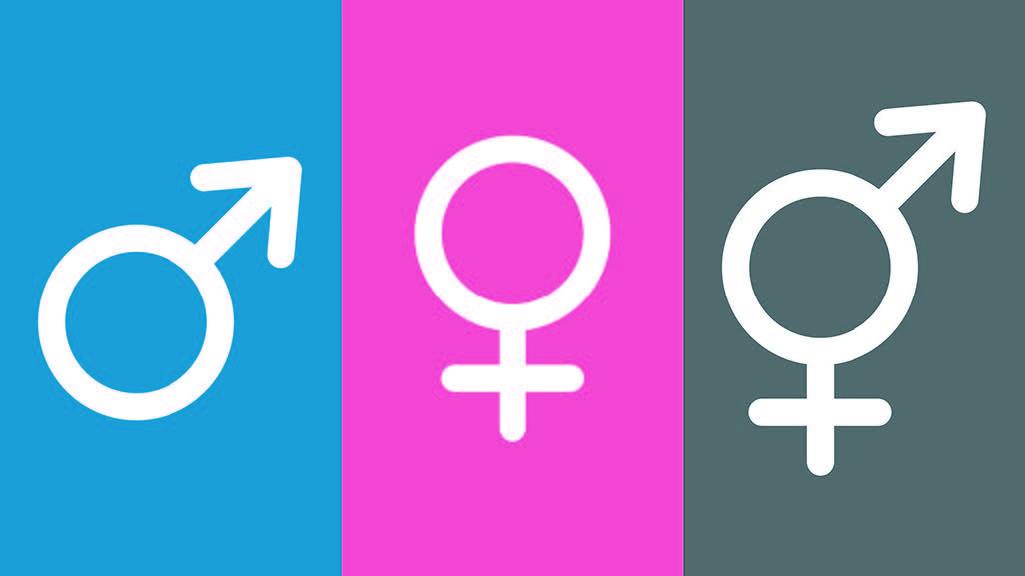 Geschlechterdiversität wird auch für Sie als Gleichstellungsbeauftragte immer wichtiger